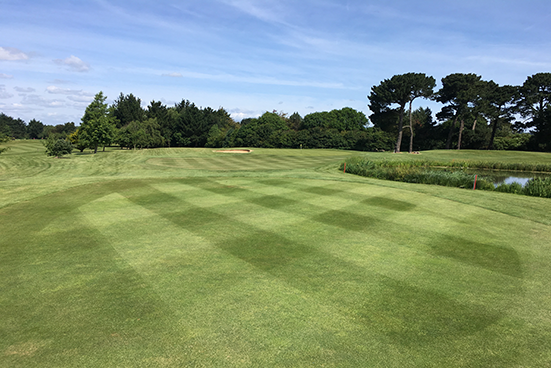Rustington Golf Centre Blog